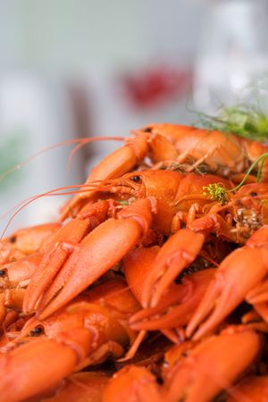 Dinner party with pile of crayfish Stock Photo