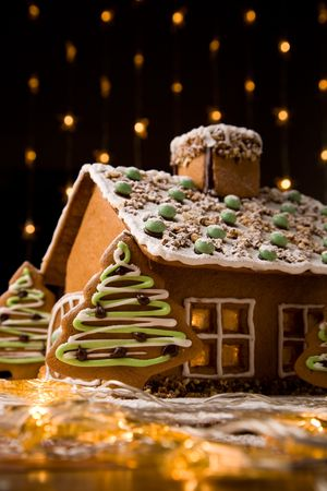 home baked: Beautiful gingerbread house with lights on dark background