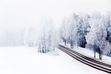 Winter landscape with frosty trees and bushes Stock Photo - 6187788