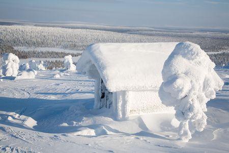 Финляндия: Beautiful winter landscape with snowy trees in Lapland