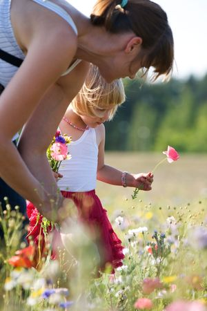 Cute little girl in the middle of flowers Stock Photo - 7585484