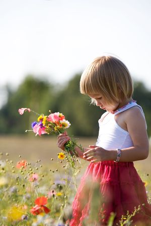 Cute little girl in the middle of flowers