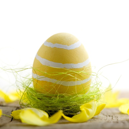 Colorful painted easter eggs with shallow focus photo