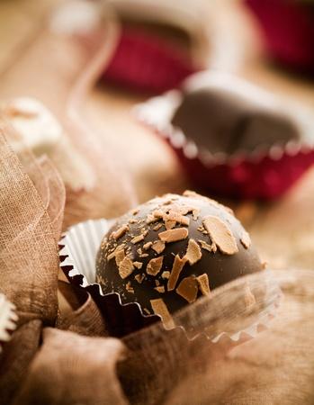 pralines: Close up of chocolate pralines with shallow focus