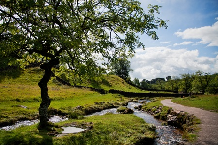 dales: Beautiful landscape in Yorkshire Dales National Park in England