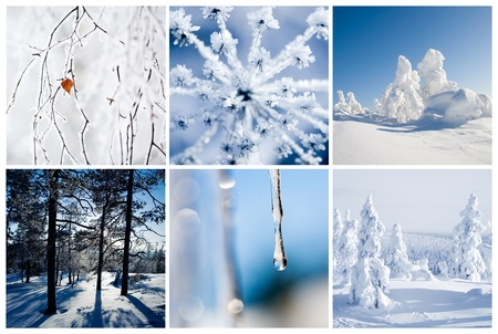 frost covered: Winter collage from Finland with beautiful details