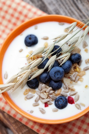 Yogurt with fresh blueberries and fruit muesli photo