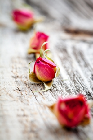 Dried rose buds on wooden table, selective focus photo