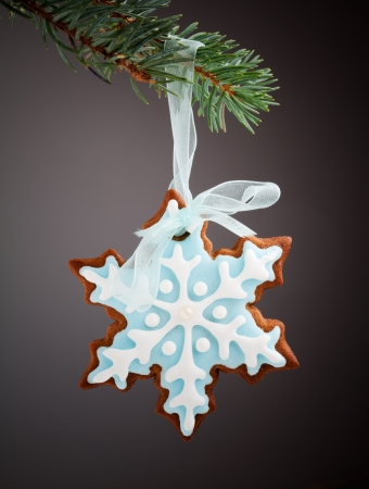 Closeup of snowflake gingerbread cookies hanging from tree photo