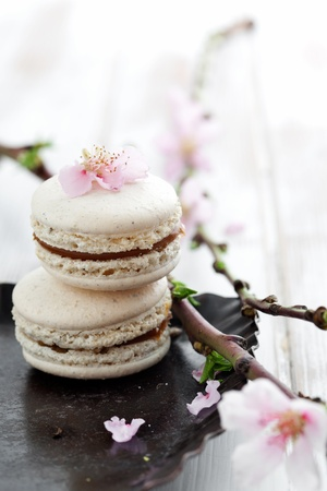 French macaroons decorated with pink cherry flowers photo