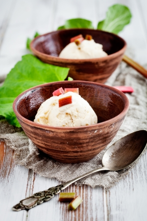 Homemade ice cream with rhubarb and vanilla photo