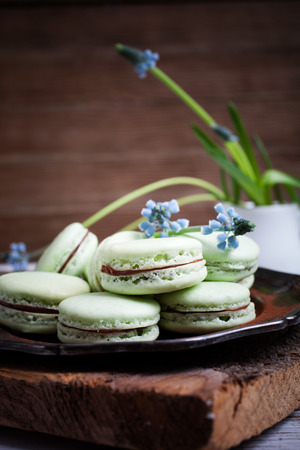 Homemade mint macaroons with dark chocolate filling photo