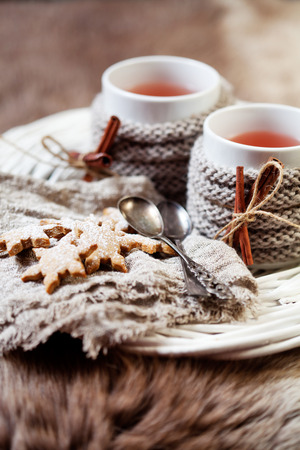 hot drink: Mulled wine with gingerbread cookies