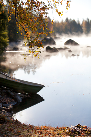 reflection: Misty morning by the lake in autumn