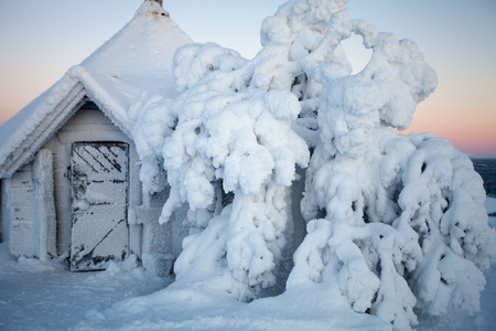 lapland: Cold winter in Lapland Finland
