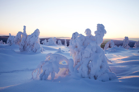 finnish: Cold winter in Lapland Finland