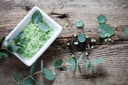 Green bath salt with fresh eucalyptus leaves Stock Photo