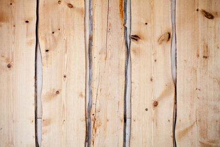 Building wall made from snag, dead wood