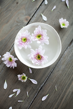 Bowl of water with pink flowers Imagens