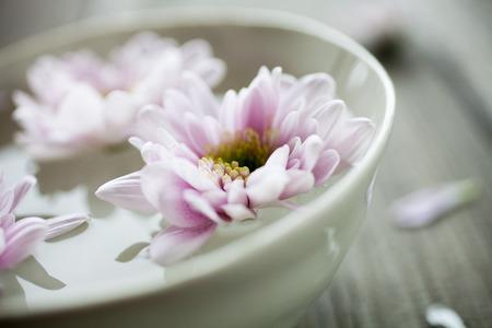 Kom water met roze bloemen