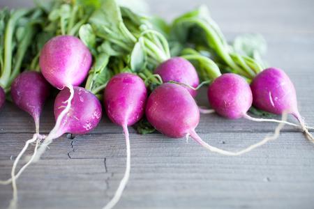 harvested: Fresh bunch of harvested radish Stock Photo