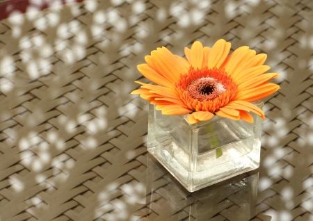 Close up an orange gerbera in a vase Stock Photo - 16756930