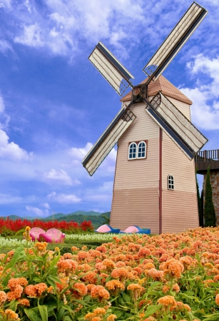 Windmill and flower garden with blue sky