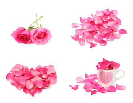 Rose for valentine concept isolated on white background Stock Photo