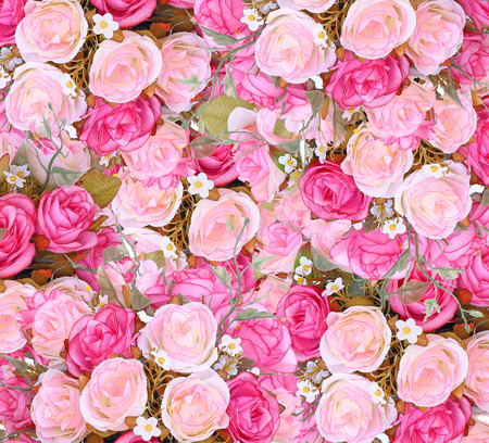 Close up pink roses texture and background