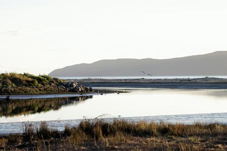 estuary: Waikanae Estuary, Kapiti, Wellington, New Zealand. Stock Photo