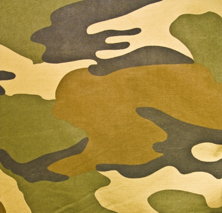 Military texture (brown, black, marsh, green colors) Stock Photo - 16321607