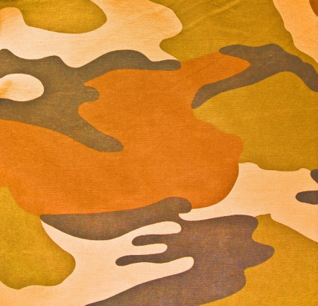 Military texture (brown, black, marsh, green colors) Stock Photo - 16340945
