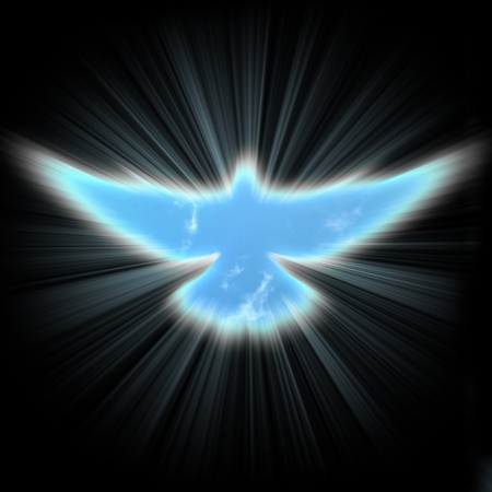 shining dove with rays on a dark  background Stock Photo - 16340003