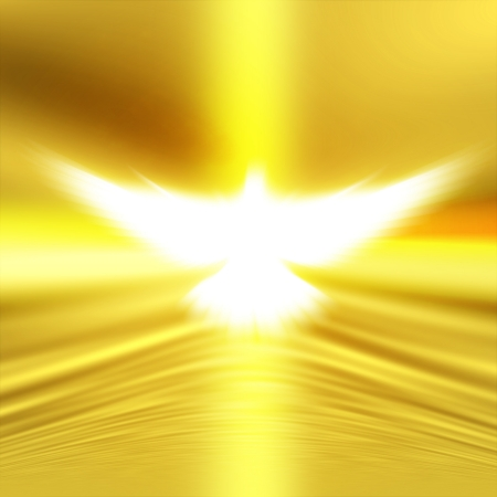 shining dove with rays on a  golden background   photo