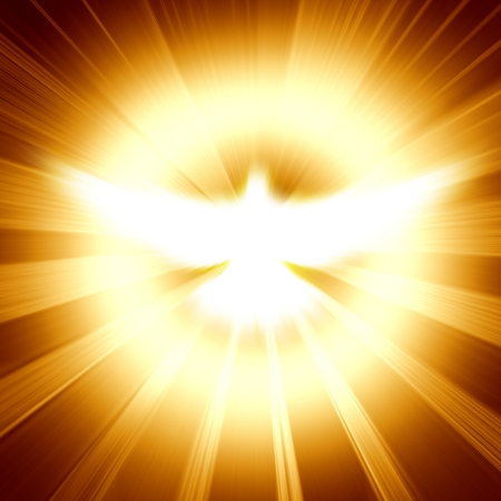 holy spirit: shining dove with rays on a dark golden background
