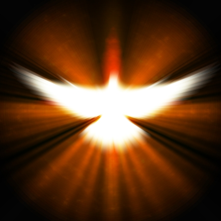 shining dove with rays on a dark golden background   photo