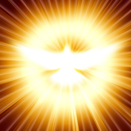 shining dove with rays on a dark golden background Stock Photo - 16340718