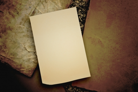 blank sticker glued to a vintage background Stock Photo - 16341463