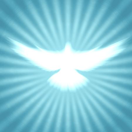 espiritu santo: paloma con los rayos brillantes sobre un fondo dorado oscuro