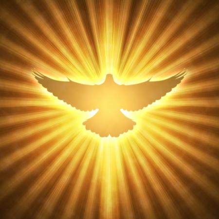 colomba della pace: splendente colomba con raggi su uno sfondo scuro dorato Archivio Fotografico