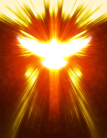 spirits: shining dove with rays on a dark golden background Stock Photo