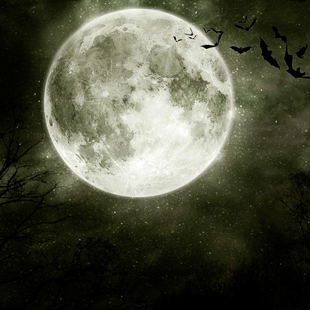 horror house: Halloween background. Bats flying in the night with a full moon in the background.