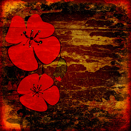 flower age: Poppies on the old grunge texture with some spots Stock Photo