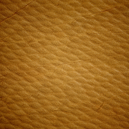 tarnished: texture of an old brown leather, close-up Stock Photo