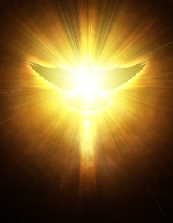 christian faith: shining dove with rays on a dark golden background Stock Photo