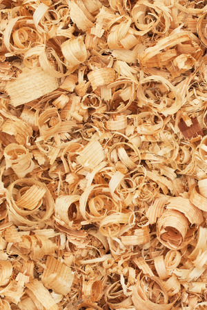 houtkrullen: background golden curls of wood shavings