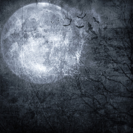 Halloween background. Bats flying in the night with a full moon in the background. photo