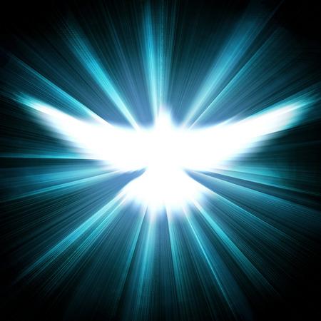 dove: paloma con los rayos brillantes sobre un fondo dorado oscuro