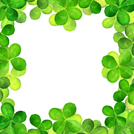 good luck: Four Leaf Clover isolated on white