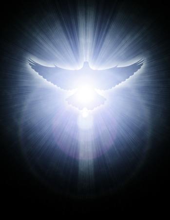 holy symbol: paloma con los rayos brillantes sobre un fondo dorado oscuro